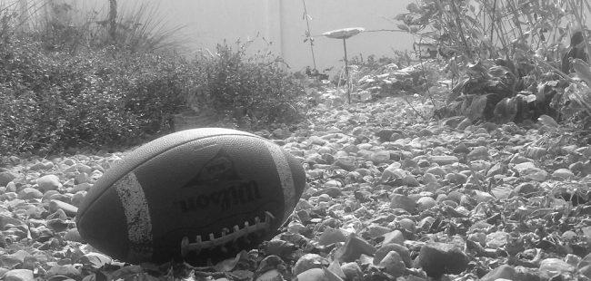 football-in-memory-garden