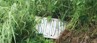 slow in grass sign