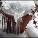 Frozen……..
