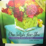 One Wish for You……..