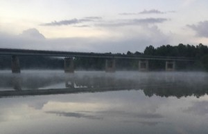 fog five